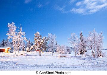 Wintergarden at night - Garden and playground landscape in...