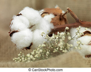cotton flower on background of canvas bag with small white...