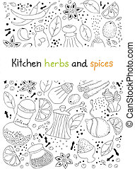 Kitchen herbs and spices doodle background - Hand drawn...