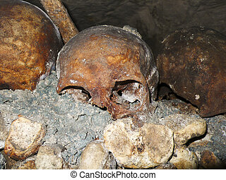 Catacombs Skull - A hyuman school is highlighted against...