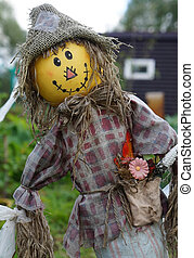 Funny scarecrow protecting the harvest