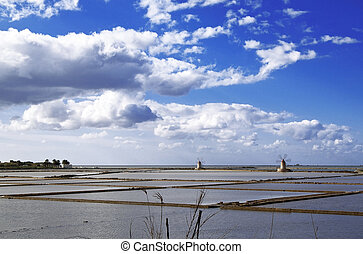 Saltern nonies - Marsala saltern with two windmills, Sicily