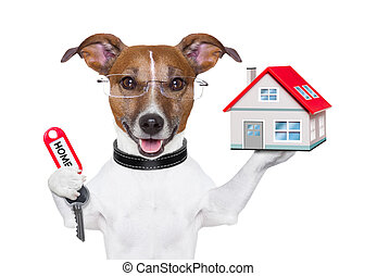 home dog owner - dog holding a small house and a red key
