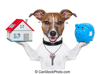 banner dog - dog holding a small house and piggy bank