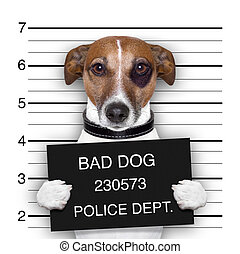 mugshot dog  - mugshot of  wanted dog holding a banner