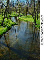 Meandering Stream - Picturesque landscape in early spring