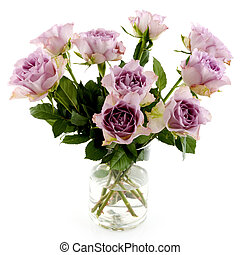 Purple roses isolated over white