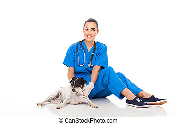 female veterinarian sitting with dog - happy female...