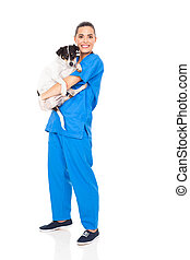 caring veterinarian holding a dog