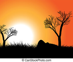Sunset in Africa - African evening landscape against the...
