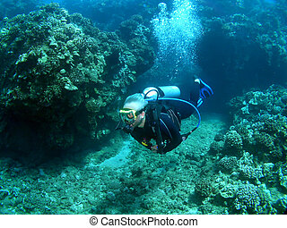 Scuba Diver Finning through an Underwater Channel in Maui...