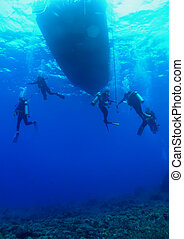 Scuba Divers on a Safety Stop