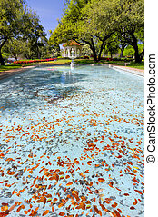 Flippen Park in Dallas, TX - Leaf-filled pool with azaleas...