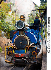 Front Toy Train Engine Darjeeling Tracks Driver