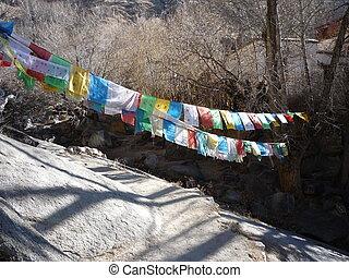 Sera MonasteryTibetan Darchor - Lhasa,Tibet,China
