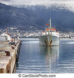 ship - Container ship entering port