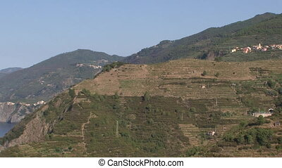 Sciachetr vineyards - Sciachetr hillside vineyards in the...