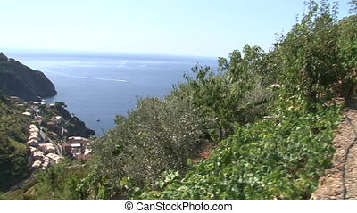 Cliffs of the Cinque Terre and the Sciachetr? vineyards