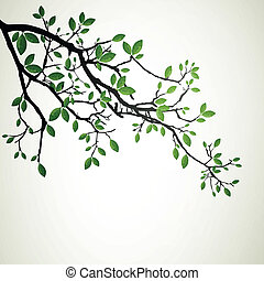 Vector Illustration of a Branch with Green Leafs