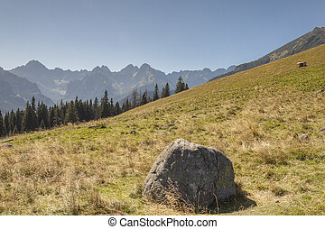 Polish landscape in Tatras mountains. - Beauty polish...