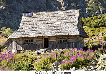 Wooden cottage in Five Lakes valley - Tatra Mountains,...