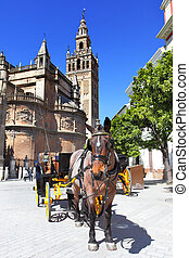 Seville - Carriages near Cathedral, Seville