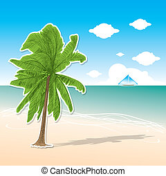 coconut tree - Hand drawn - The abstract of coconut tree -...