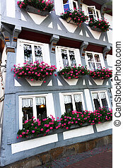 House in Hildesheim - Medieval house with flowers in...
