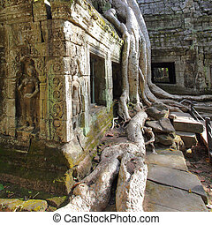 Ta Prohm temple - Ancient ruins of Ta Prohm temple at the...