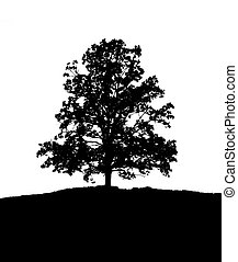 black and white tree - An illustration of a lonely black and...