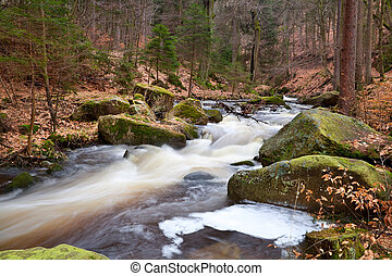 fast mountain river in forest