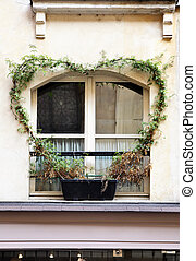 Heart - Window of old house with convolvulus, Paris, France
