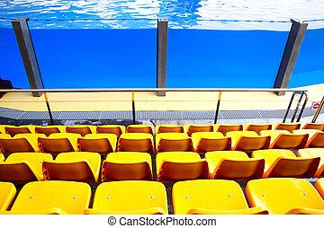Oceanarium - Empty yellow plastic seats at oceanarium