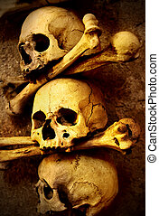 Skulls and bones close up sepia toned