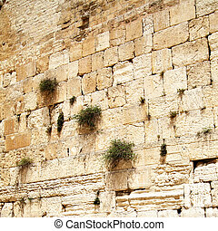 Western wall - Close up of Western wall. Jerusalem. Israel.