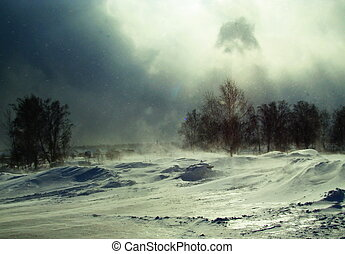 A Blizzard in the forest - The wind blows and the snow on...