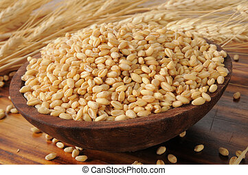 Whole wheat kernels