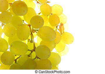 Bunch of grapes close-up isolated over white background