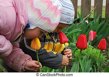 boy and girl smelling tulip - Spring in the garden boy and...