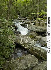 Roaring Fork, Great Smoky Mtns NP, TN - Roaring Fork Creek,...