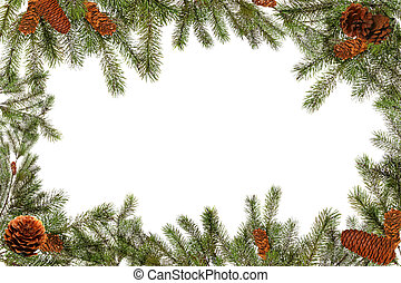Green Tree Branches and Pinecones on a White Background -...