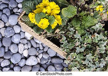 Botany - Floral arrangement - Nature - Botany - Floral...