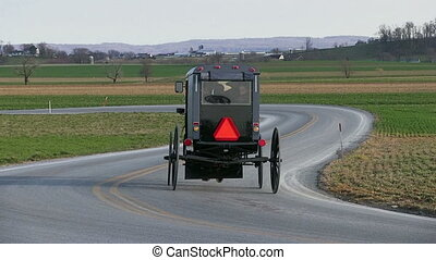 Amish Horse and Carriage - An Amish family travels a rural...