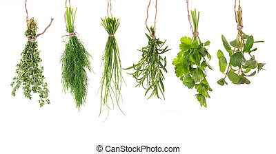 Fresh herbs hanging isolated on white background