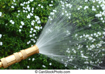 Watering flower by Brass Adjustable Nozzle