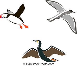 Isolated sea birds - Set of sea birds in cartoon style...
