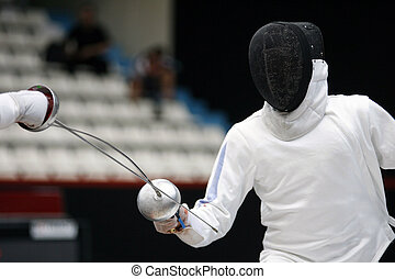 Fencing *** Local Caption ***