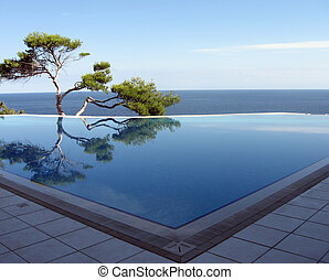 Pine-tree, pool & sea - Pine near pool on the bank of Black...