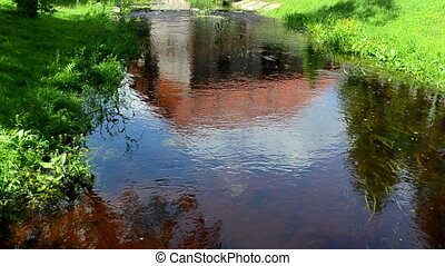 stream water flow flora - summer stream water flow between...