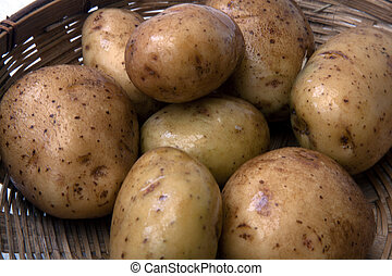 POTATO - potatoes to make vegetable, salad, blended for a...